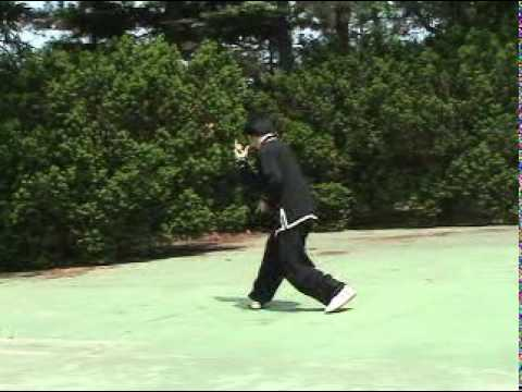 Xingyiquan (形意拳 Xingyi Quan, Hsing I Chuan, Hsing Yi Chuan) Form and Applications Image 1