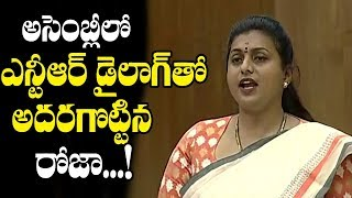 MLA Roja Says Jr NTRand#39;s Dialogue in AP Assembly | AP Assembly | Top Telugu Media