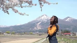 【日本の桜】福島県 観音寺川の桜並木