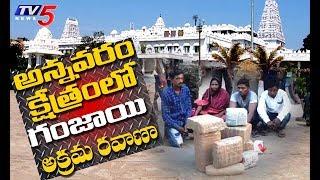 Drug Trafficking Case : Annavaram Cops Arrested 6 Smugglers | TV5