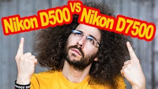 Nikon D500 VS Nikon D7500 Comparison: Which To Buy?