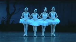 Swan Lake Act 2 Little Swans 8 Performances For Comparison