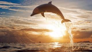 RICHARD CLAYDERMAN- EL DELFIN AZUL EN HD