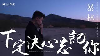 【HD】暴林   下定決心忘記你 歌詞字幕完整高清音質 ♫ Bao Lin   Determined To Forget You Feat  乞丐
