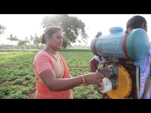 RFIS: Balu – Dindigul, Tamil Nadu