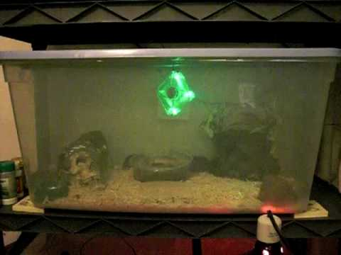 Fan for reptile enclosure with lights!  Homemade