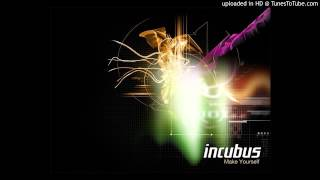 Watch Incubus When It Comes video
