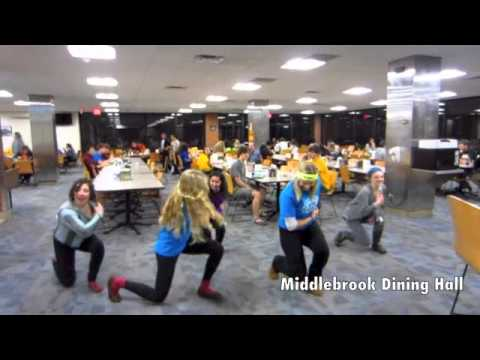UMN Dance Marathon 2013 Promo Video