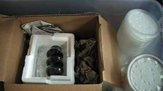 Unboxing my new Poison Dart Frogs.