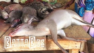What You Find In Nigeria's Bush Meat Market