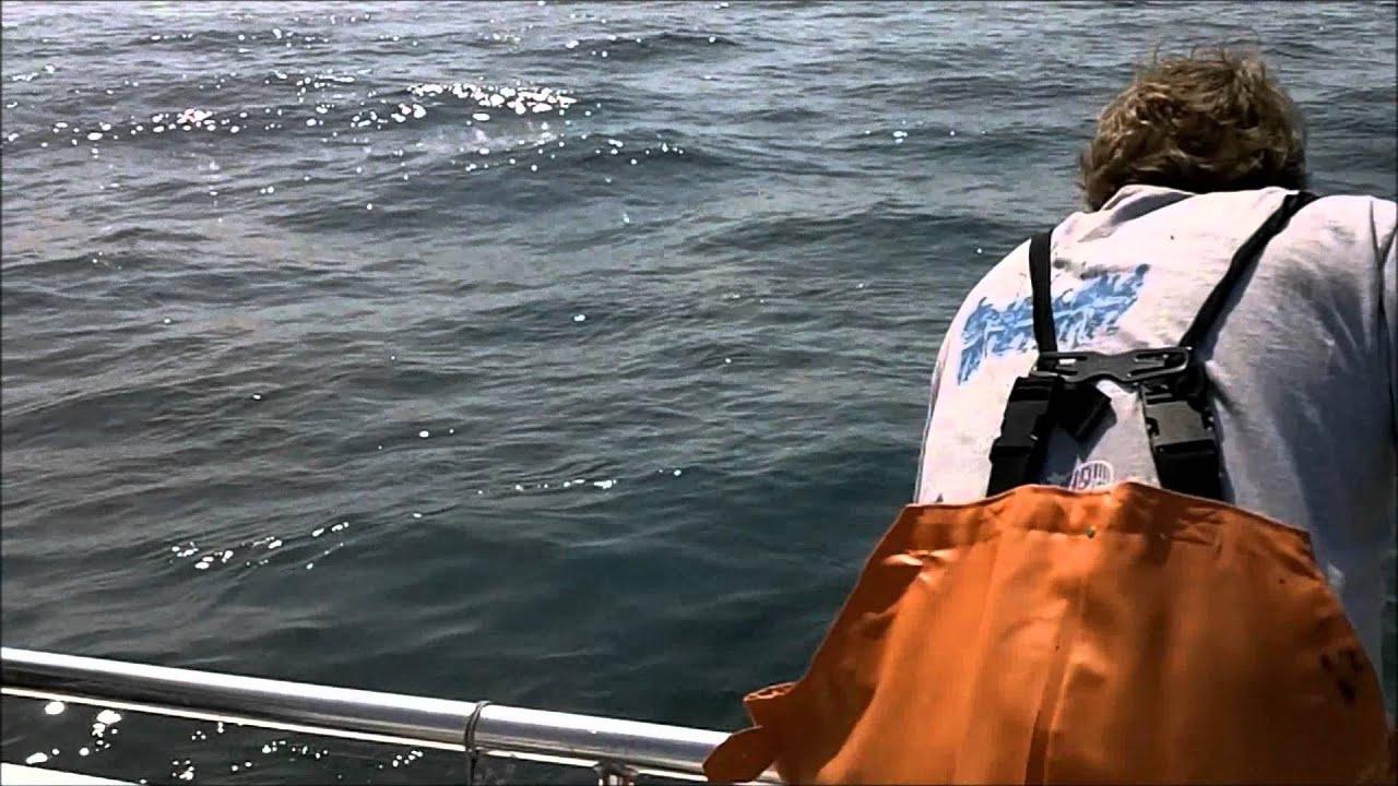 Striper fishing on the 50 39 nan sea j charter boat belmar for Belmar nj fishing report