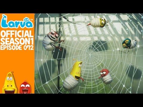 [Official] Spider - Larva Season 1 Episode 72