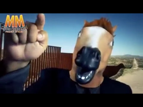 Caballo Bonanza.Bolivia Le Responde a Pepeproblemas Ignorante Fulero