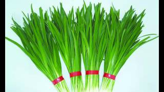 Chives Vegetable & its health Benefits
