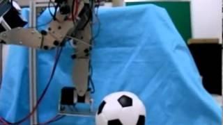 Dynamic Humanoid Robot