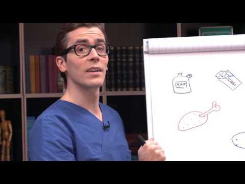Ernährungsformen- welche gibt es?