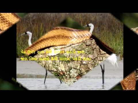 મુજને લાગે નવાઇ ભાઇ!  - Gujarati Balgeet kavita poem video