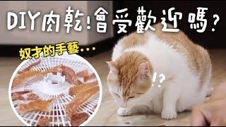 【黃阿瑪的後宮生活】DIY肉乾!會受歡迎嗎?