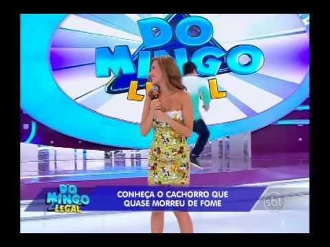 Domingo Legal (25/05/14) - Luisa Mell salva os aninais de maus tratos - Completo