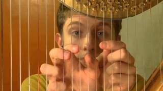 One Man, One Harp, Nine Hands (And Viola): A Gerudo Valley Cover