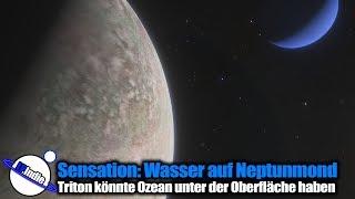 Sensation: Wasser auf Neptunmond Triton