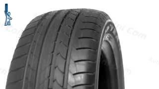 Видеообзор шины Goodyear EfficientGrip - [Autoshini.com]