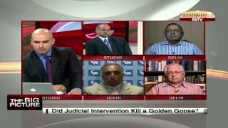 The Big Picture - Telecom_ Did judicial intervention kill a golden goose?