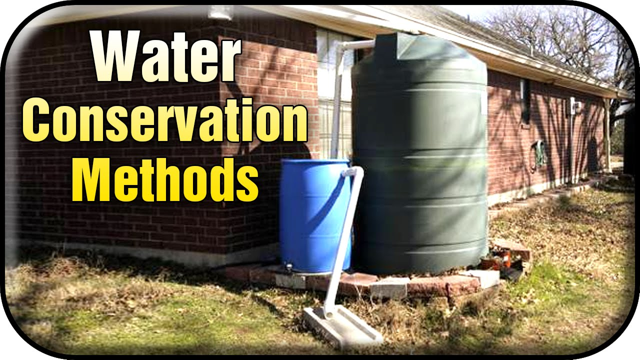 rainwater harvesting conserving water at dhs essay