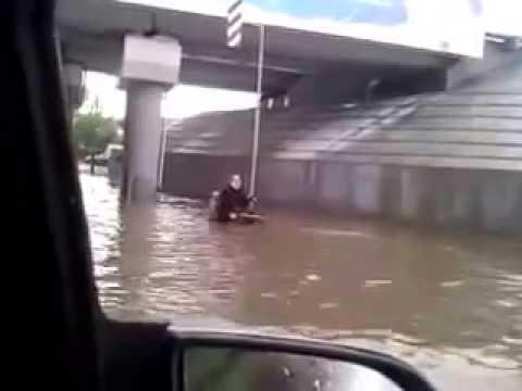 Perro salva a persona en silla de ruedas en inundación