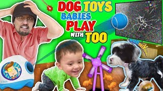 DOG TOYS vs TV! FUNnel Family Vlog