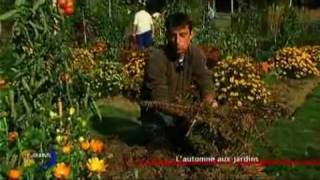 Jardinage : Le paillage (Vendée)