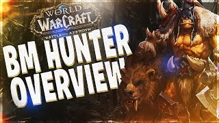 BM HUNTER BFA GUIDE!! BATTLE FOR AZEROTH 8.0