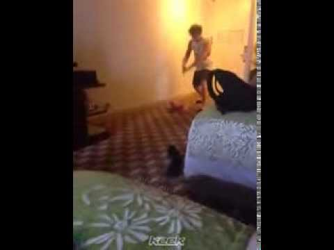5 Seconds Of Summer - Keek - Pony Rage