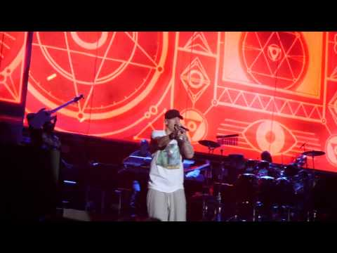 My Name Is - Real Slimshady - Without Me - Eminem Lollapalooza 2014