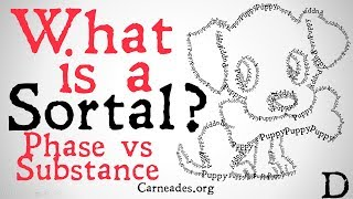 What is a Sortal? (Phase vs Substance)