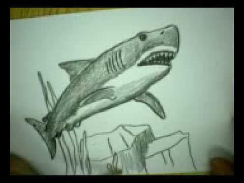 ArtSnacks Great White Shark