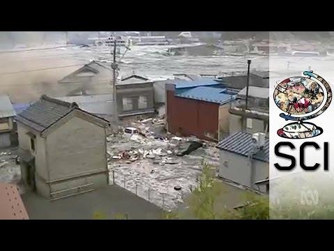 japan tsunami 2011 research paper