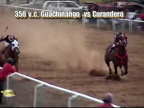 guachinango vs curandero