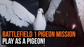 Battlefield 1 Pigeon Mission Gameplay - Play as a Pigeon!