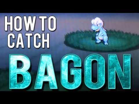 How to Catch - Bagon - Pokemon Black 2 and White 2