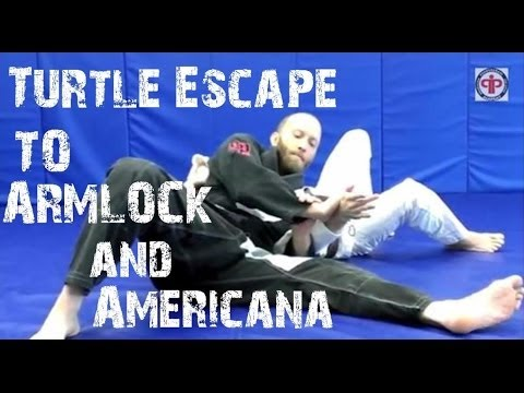 Turtle Escape to Armlock and Shoulder Lock Submission - Technique of Month Image 1