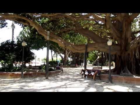 Parque Canalejas (Alicante - Spain)