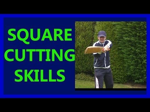 Hd Cricket Video How To Play Cricket Square Cut Shots Tutorial Tips #2 Right video