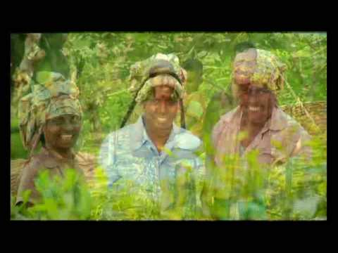Dinawamu Sri Lanka - Agriculture - film and music by REDLIME