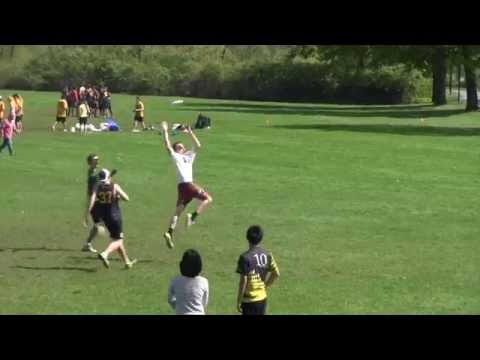 Masco Disc: Banquet Video