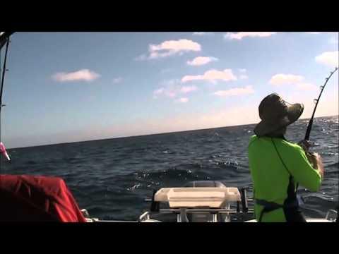 Marlin off Schouten Island Tassie