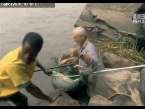 River Monsters; Tribute To Jeremy Wade~♥