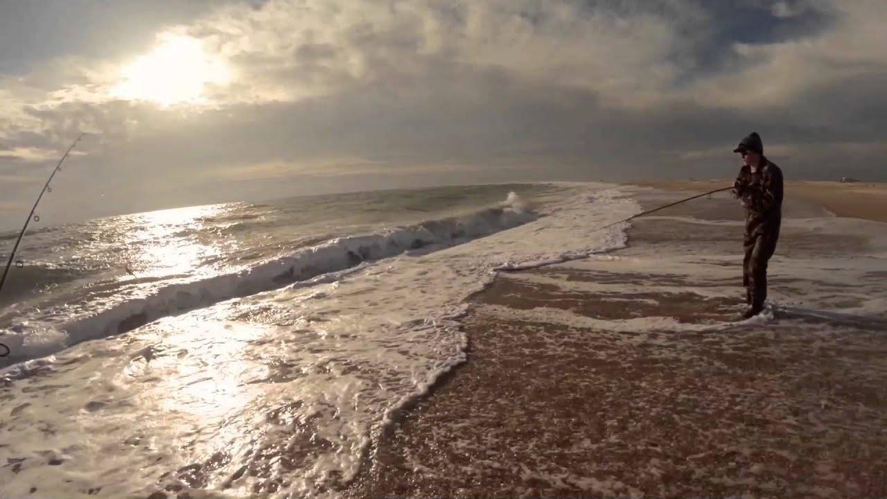 Outer banks surf fishing 2014 fall trip davis island for North carolina surf fishing license