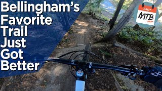 Big Jumps, Small Hucks, and Dope Drops // Shredding SST in Bellingham, WA