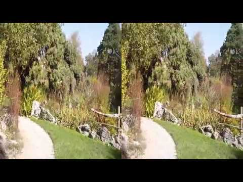 The Conservatory and Botanical Garden of the city of Geneva in 3D SBS video